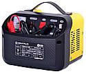 Зарядное устройство Кентавр ЗП-150НП, фото 3