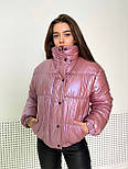 Женская куртка перламутровая короткая зимняя с воротником стойкой (р. 42-48) 1701583, фото 6