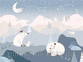 Білі ведмеді 1