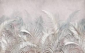 Tropical 23 №1