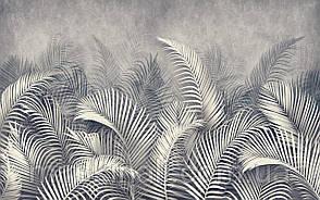Tropical 23 №5