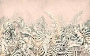 Tropical 23 №8
