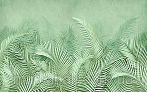 Tropical 23 №9
