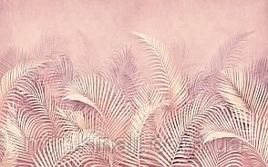 Tropical 23 №11
