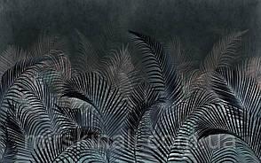 Tropical 23 №14