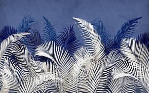 Tropical 23 №15