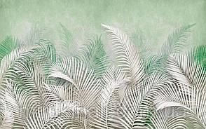 Tropical 23 №16