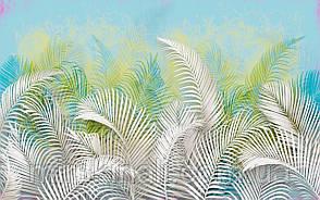 Tropical 23 №17