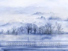 Ліс в тумані №1