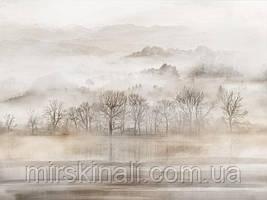 Ліс в тумані №2