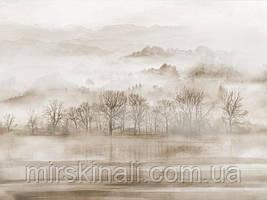 Ліс в тумані №3