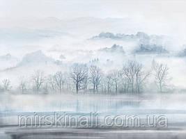 Ліс в тумані №4