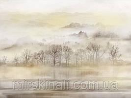 Ліс в тумані №7