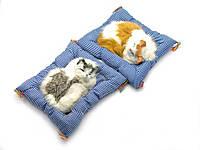 Кошка спящая на коврике в автомобиль (21х20х6см)