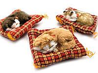 Котенок на коврике (мяукает) в автомобиль (14х11х3 см)