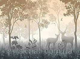 Ліс 3