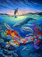 Морское дно 5