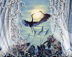 Птахи 11