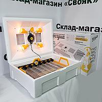 "Инкубатор ""Теплуша люкс"" 72 яйца (Автоматический переворот). Цифровой термометр. Для всех видов птиц, фото 1"