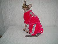 Комбинезон для котов Кнопка из велюра, фото 1
