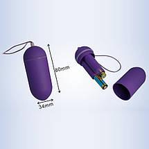 Виброяйцо вибратор на пульте под трусики VibroEgg La Fleur, фото 3