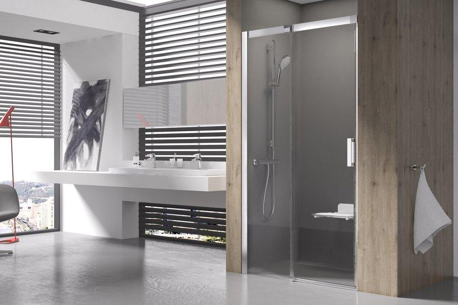 MSD 2-100 R bright alu (Transparent) Душова двері