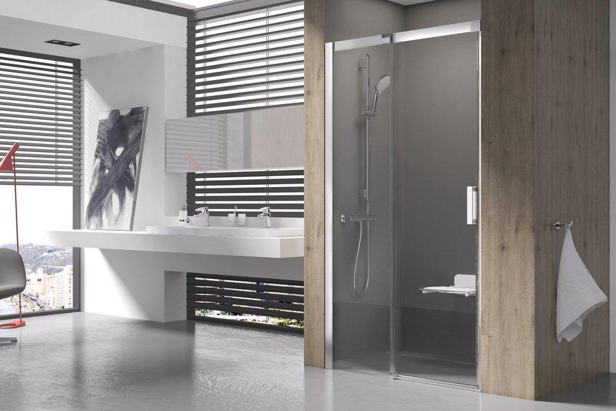 MSD 2-100 L bright alu (Transparent) Душевая дверь
