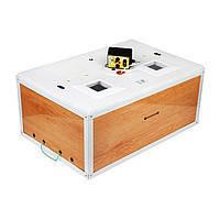 Инкубатор механический бытовой для выведения цыплят Курочка ряба 100 обшит пластиком цифровой