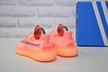 Жіночі кросівки коралові Yeezy Boost, фото 5
