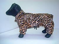 Комбинезон для собак Леопард , фото 1