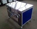 Сковорода электрическая промышленная СЭМ-0.2 мастер, фото 2