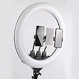 Кільцева світлодіодна LED лампа 45 см з пультом і чохлом Набір для блогера 2 в 1 Селфі кільце з штативом 2м, фото 3