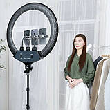 Кільцева світлодіодна LED лампа 45 см з пультом і чохлом Набір для блогера 2 в 1 Селфі кільце з штативом 2м, фото 2