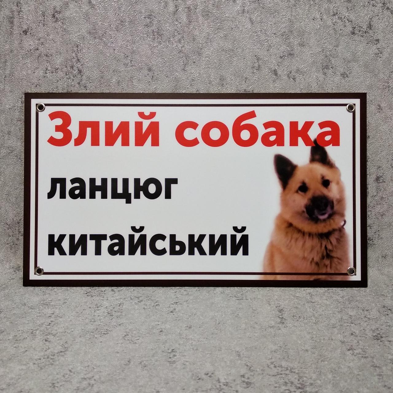"""Табличка """"Злая собака. Цепь китайская!"""" (Двортерьер)"""
