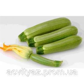 Алия F1 семена кабачка ультрараннего 40 дн. светло-зеленого (Clause)2.500с