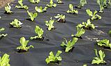 Агроволокно(Спанбонд) Белый 23 г/м, 3.2 ширина, фото 4