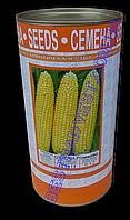 Семена кукурузы «Спокуса F1» инкрустированные, 500 г