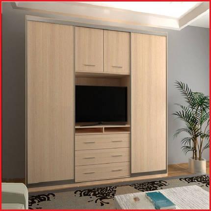 Шкаф купе ТВ-3 / ширина 2600 (Анабель), фото 2