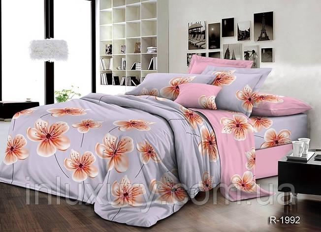 Комплект постельного белья с компаньоном R1992, фото 2