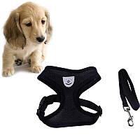 Шлейка для маленької собаки M (2.5-4 кг), шлейки поводок для вигулу кішок, собак   поводок для котов
