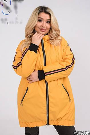 Стильна Куртка з капюшоном утеплена демісезонна розміри 50-60, фото 2