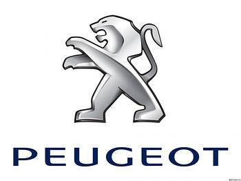 Хром накладки для авто Peugeot