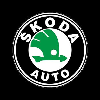 Хром накладки для авто Skoda