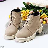 Бежевые женские ботинки гриндерсы из натуральной замши на низком ходу, фото 4