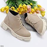 Бежевые женские ботинки гриндерсы из натуральной замши на низком ходу, фото 6