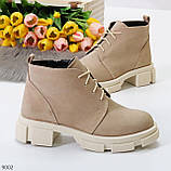 Бежевые женские ботинки гриндерсы из натуральной замши на низком ходу, фото 7