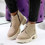 Бежевые женские ботинки гриндерсы из натуральной замши на низком ходу, фото 8