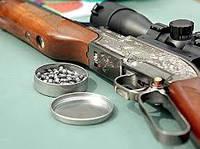 Класифікація пневматичних гвинтівок за призначенням