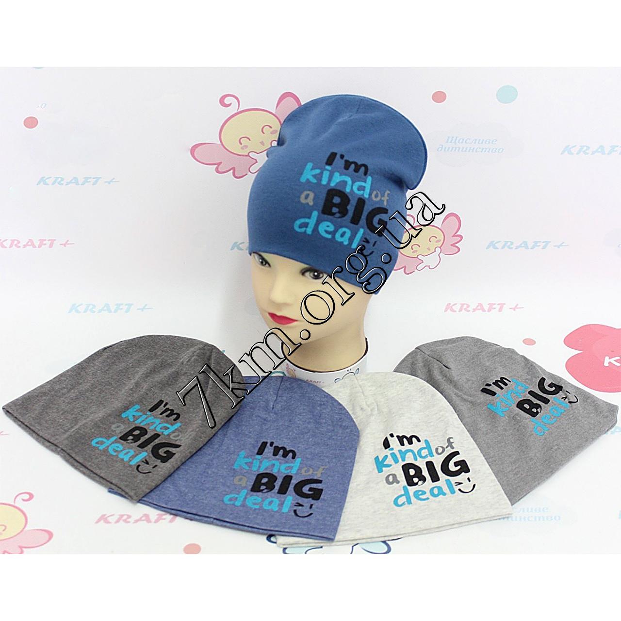 """Шапка детская трикотаж для мальчиков """"Big"""" 48-50 р.р. Украина Оптом 395-T"""