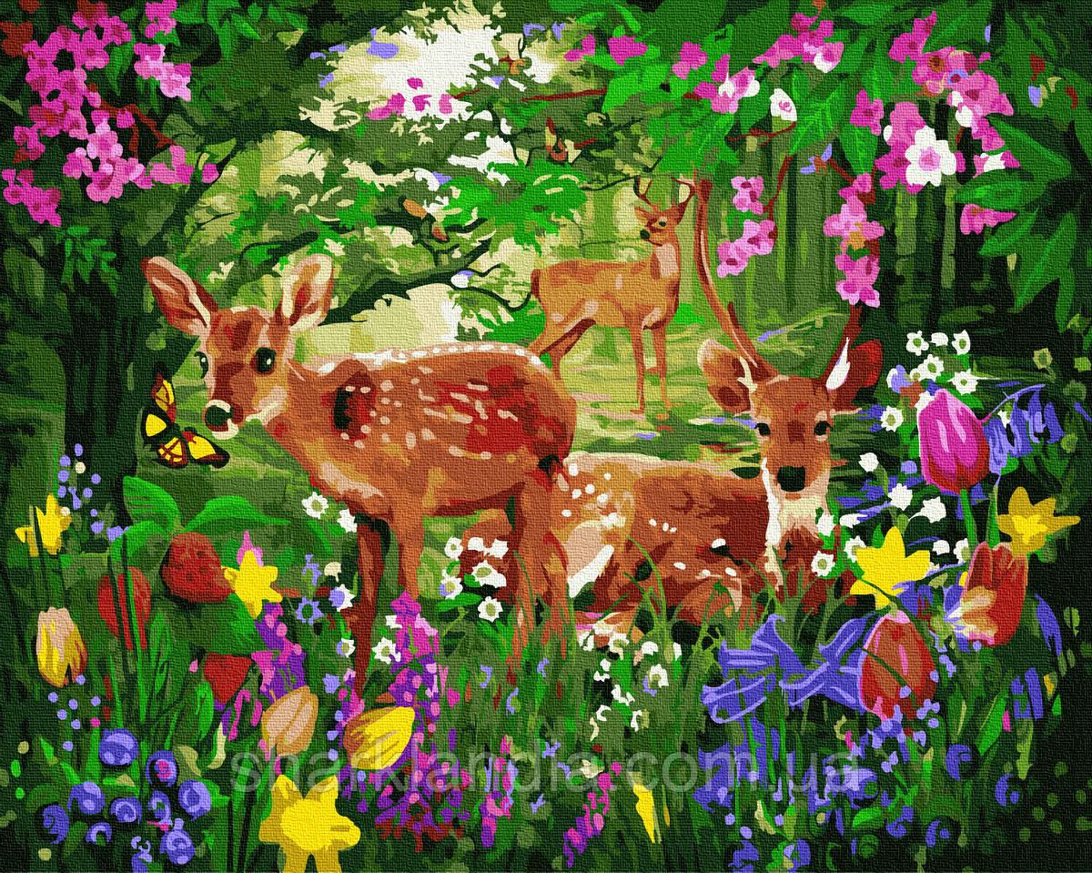 Картина по номерам Олени в цветущем лесу 40*50см Brushme